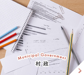 Municipal Government 村政